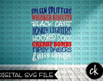 SVG Cut File, Instant Download, Cricut, Silhouette, Stencil,T-Shirt, Mug, Tumbler, Fourth of July, Fireworks, Joe Dirt, Spleen Splitters