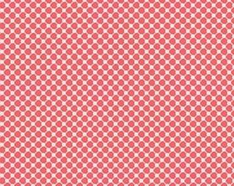 EXTRA 20 30% OFF Carina Gardner Posy Garden Pink Grid