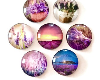 Lavender Magnets- Set of seven