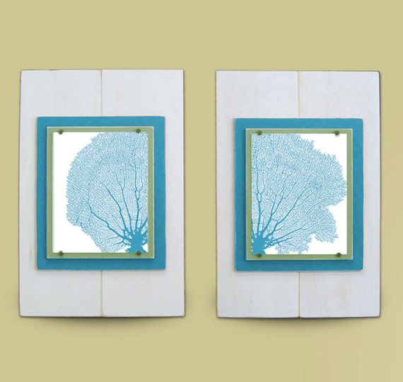 Sea Fan Wall Art Set of 2 Framed Prints