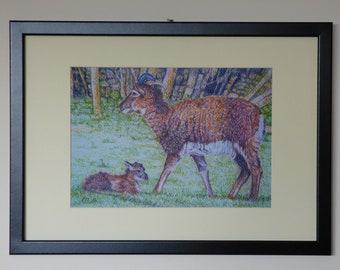 Framed Sheep Art, Framed Art Print, Soay Sheep and Lamb, Farm Animals, Sheep Print Framed, Rural Art Print, Rustic Wall Art, Sheep Art Print