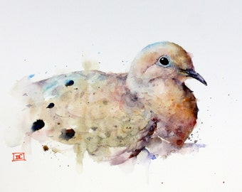 MOURNING DOVE Watercolor Bird Art Print by Dean Crouser