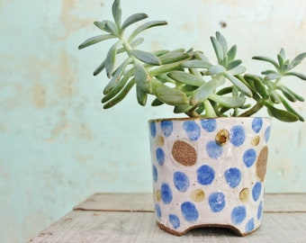 READY TO SHIP Ceramic Planter Pot Stoneware Spotty Blue  Decorated Rustic Textured Australia ooak