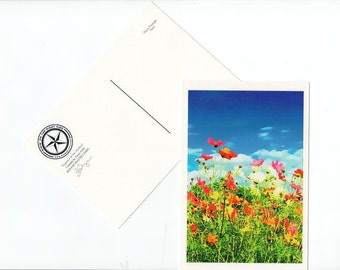 Poppy Postcard Texas Flower Wildflower Texas Hill Country Card