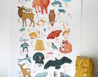 "ABC Animal Print - 10x13 print - baby kids nursery art, Great Plains, scissortail flycatcher bison fox ""Oklahoma Animals"""