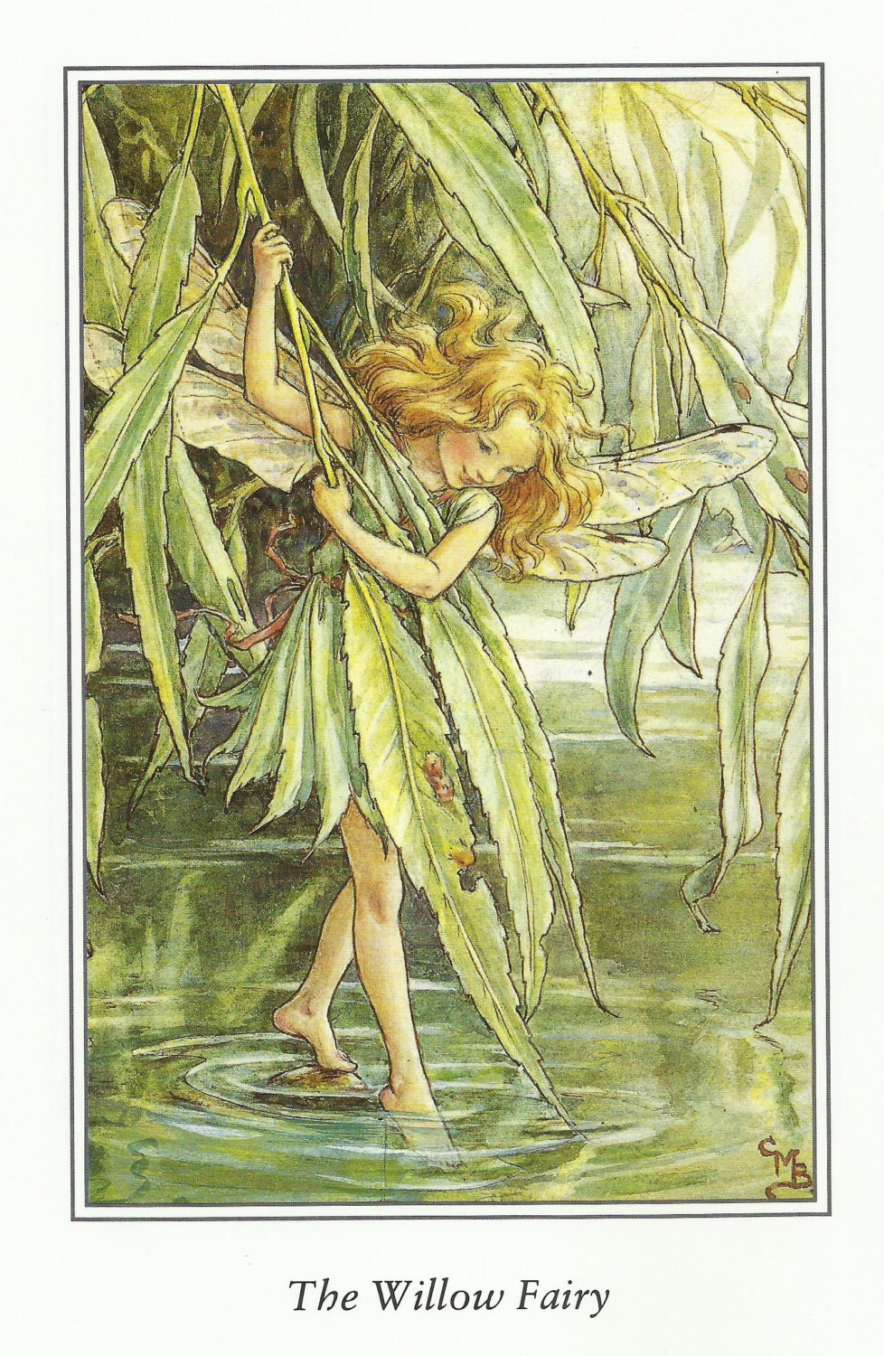 Willow Fairy Cicely Mary Barker Flower Fairies Vintage Print