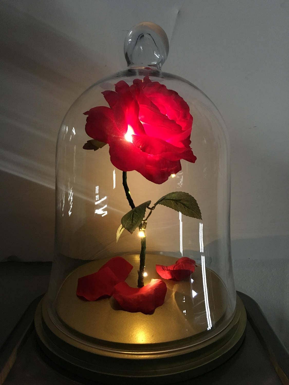 beaut et la b te rose enchant e rose rose en verre cloche. Black Bedroom Furniture Sets. Home Design Ideas