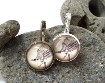 Dinosaur Earrings - Stegosaurus Earrings in Bronze or Silver