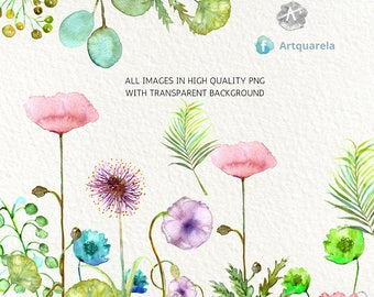Nature simplicity Clipart - Watercolour Flowers Clipart png 300 dpi - Delicate poppies , wedding invitations.  leaves. Instant download.
