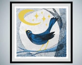 Blackbird - limited edition silkscreen art print - a bright eyed blackbird gazes up at the night sky