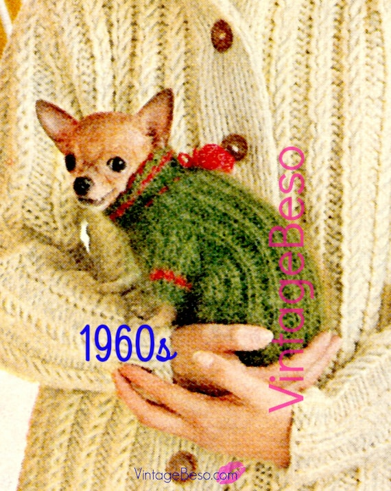 Vintage 1960s Chihuahua Dog Sweater Knitting Pattern INSTANT