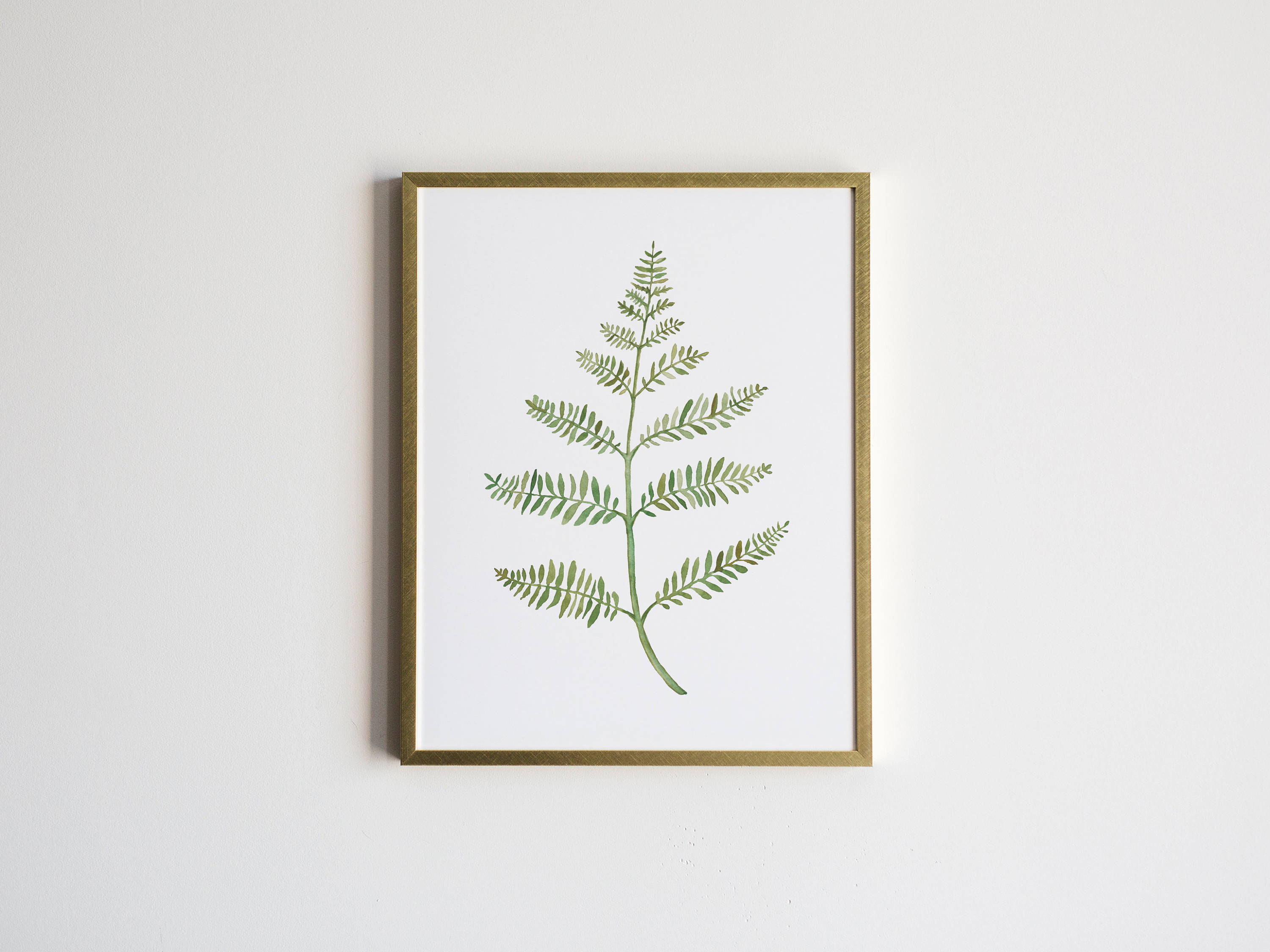 Watercolor fern botanical illustration unique greenery zoom pooptronica