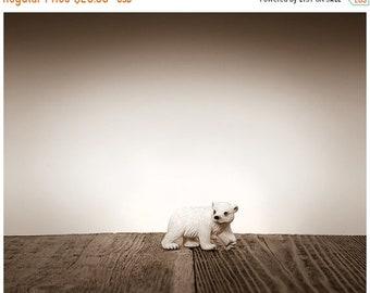 FLASH SALE til MIDNIGHT Nursery Decor, Baby animal art, Baby room ideas, Safari animals,  Polar Bear Cub , Photo Print