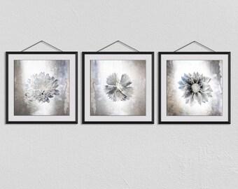 Set of 3, Nature, florist, Botanical Prints, Flowers Photographs, Wall Art, Romantic Art, Square Print, Nature Art, Flower Wall Decor