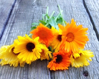Calendula Seeds, Mixed Colors Calendula, Heirloom Seeds, Cottage Garden Flower Seeds, 25 Seeds Fresh From This Year's Crop