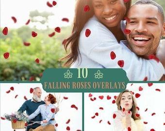10 Falling Petals Overlays, Photoshop Overlays, Valentine Overlays, Roses overlays, Red Rose Petals,  Fluttering Petals, Fantasy Png file