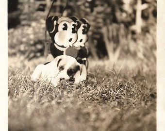 """Vintage Snapshot """"Look-A-Likes"""" Adorable Little Puppy Dog Posed With Cute Cartoon Lawn Ornaments Found Vernacular Photo"""