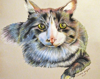 "Title ""Thor, the Thunder Cat"" - Color Pencil Drawing  - Gray Tabby Cat Portrait - Art Print - Signed by Professional Artist"