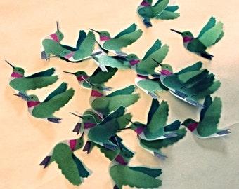Vellum Hummingbirds