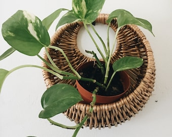 Hanging woven plant basket // wall plant basket //  indoor wicker planter
