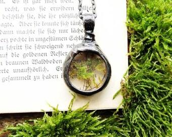 Valentine Gift,terrarium jewelry, tiny Real Moss Necklace, terrarium necklace, dried moss, Real moss necklace, botanical, real plant jewelry