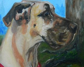 "Custom 10'x10"" Pet Portrait by LaPine Design - Oil Painting on Gallery Wrapped Canvas"