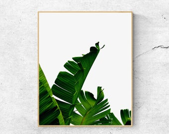 Banana Leaf, Leaf Print, Palm leaf, Scandinavian print, Botanical Print, Wall art prints, Palm tree print, Nature prints, Printable wall art