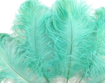 Party Centerpiece, 10 Pieces - MINT GREEN Ostrich Tail Feathers : 4048