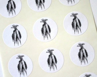 Carrot Stickers One Inch Round Seals