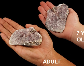 """Lepidolite Mica 2 1/2"""" 4-7 Oz Large Raw Rocks and Minerals All Chakras Healing Crystals and Stones Raw Natural Mineral Specimen Reiki"""