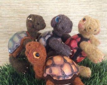"""Little """"gourded"""" tortoises"""