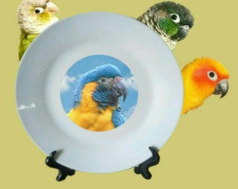 "Blue-throated Macaw Parrot Blue Sky Clouds White Decorative Ceramic 8"" Plate and Display Stand"