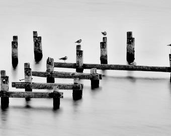 TETRIS. Landscape, Birds, Lake, Water, Black and White, Long Exposure, Home Decor, Art Print, Canvas Art, Wall Art.