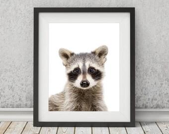 Raccoon Print, Raccoon Art, Printable Nursery Wall Art, Instant Digital Download, Baby Animals, Childrens Bedroom Print, Woodland Animal Art