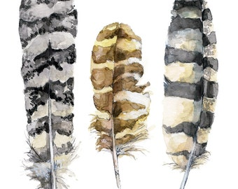 """Feather Painting - Print from Original Watercolor Painting, """"Owl Feathers"""", Bird Feathers, Feather Print, Owl"""