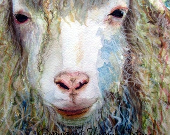 Sheep Print Rustic Farmhouse Long Haired Sheep Giclee Print of  Watercolour and Ink Painting on Watercolour Paper