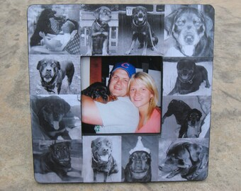 "Pet Memorial Frame, Pet Collage Picture Frame, Personalized Pet Memorial Picture Frame, Custom Dog Frame, Cat Frame, 8"" x 8"", Unique Gift"