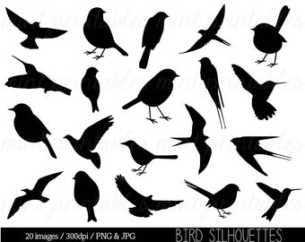 Bird Clipart Clip art, Bird Silhouette Clipart, Cute bird, animal clipart, swallow, sparrow - Commercial & Personal - BUY 2 GET 1 FREE!