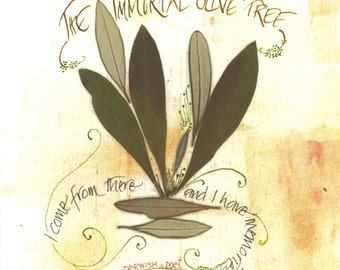"""Blank note card with olive leaves and calligraphy:  """"The Immortal Olive Tree"""""""