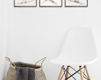 Watercolor Print Set | Bird set No.2 -  3 Bird Set, Bird Art, Bird Print, Animal Art, Wall Art, Wall Decor, Bird Nursery print