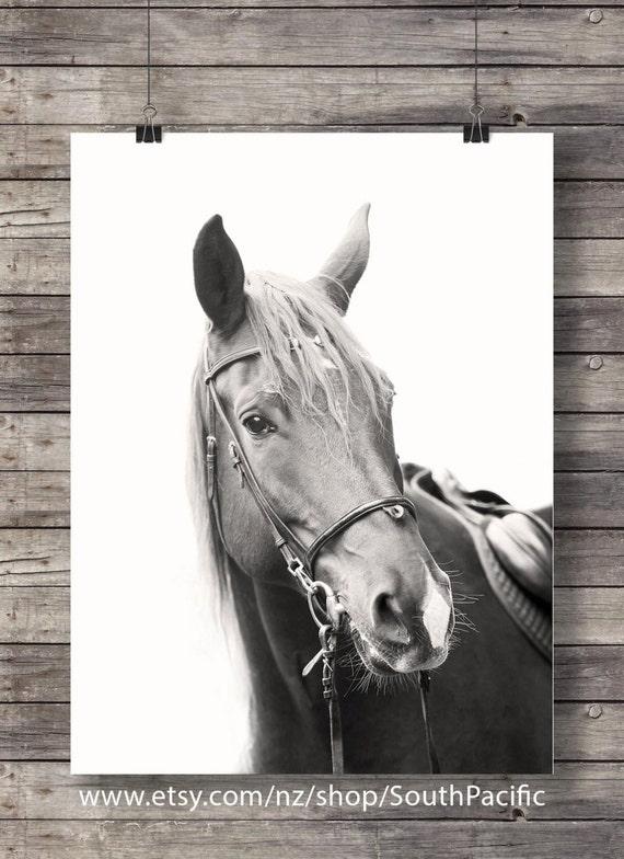 Wild horses art print horse faces photograph sepia horses