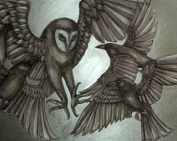 Owl and Crow / Raven Bird Animal Art Print by Lynnette Shelley