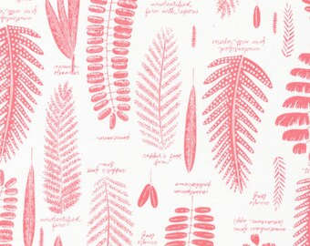 Pressed Leaf in Pink by Sarah Watson from the Biology collection for Cloud 9 Fabrics