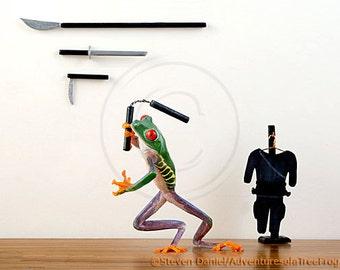 Frog Art, Ninja, Marial Arts, Nunchucks, Karate, Ninja Art
