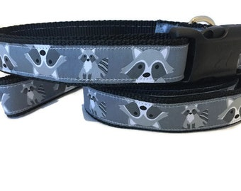 Dog Collar and Leash, Raccoon, 6ft lead, 1 inch wide, adjustable, quick release, metal buckle, chain, martingale, hybrid, nylon