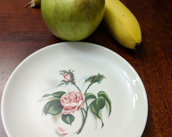 Ballerina Dessert Plates