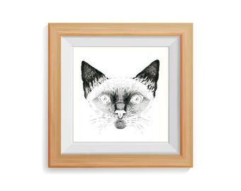 Cat portrait. Original Drawing.