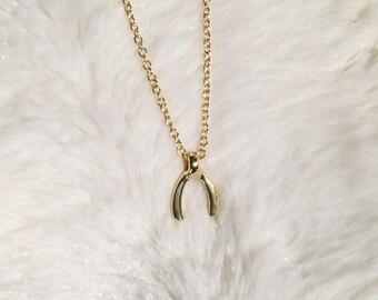 Tiny Wishbone Necklace