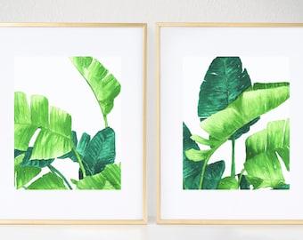 Lush Palms Duo