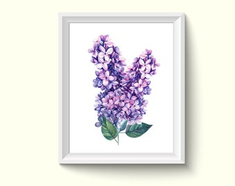 Lilac Flower Watercolor Painting Poster Art Print P194